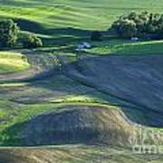 The Palouse 3 Poster