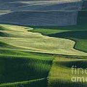 The Palouse 4 Poster