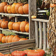 The Pumpkin Shack At Isom's Orchard Poster