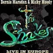 The Snakes Live In Europe Poster