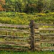 The Split Rail Meadow Poster by Benanne Stiens