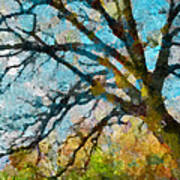 The Tree Of Many Colours  Poster