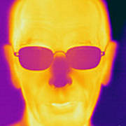 Thermogram Of An Elderly Man Poster