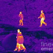 Thermogram Of People Walking Poster