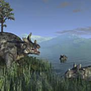 Three Estemmenosuchus Mirabilis Face Poster