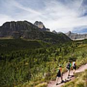 Three Hikers Walk On A Trail Poster
