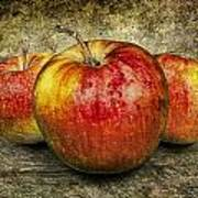 Three Red Apples Poster