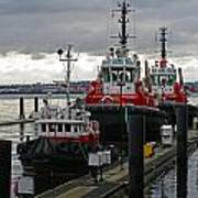 Three Red Tugs Poster
