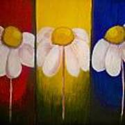 Three Times A Daisy Poster