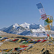 Tibetan Buddhist Prayer Flags Atop Pass Poster by Gordon Wiltsie