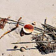 Tidal Treasures Poster