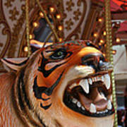 Tiger Merry Go Round Animal Poster