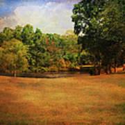 Timbers Pond Poster by Jai Johnson
