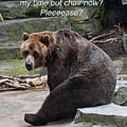 Time Out Bear Poster