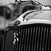 Timmis-ford V8 Greyhound Hood Ornament Poster