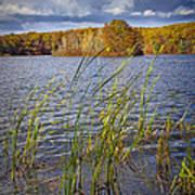 Tiny Island On Hall Lake No 0086 Poster