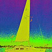 Tom Ray's Sailboat Poster