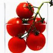 Tomatos Art Abstract Poster