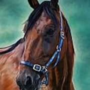 Tommy - Horse Painting Poster