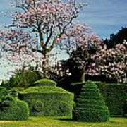 Topiary Garden In Spring Poster