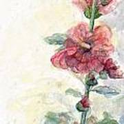 Touch Of Summer Hollyhocks Watercolor Poster