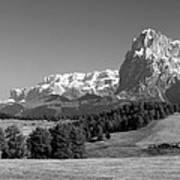 Treeline Across Alpi Di Siusi In The Dolomites Poster