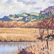 Cors Caron Nature Reserve Tregaron Painting Poster