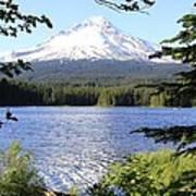 Trillium Lake At Mt. Hood Poster