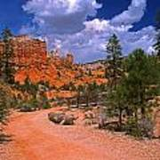 Tropic Canyon In Bryce Canyon Park Poster