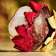 Tropical Mangosteen - Ready To Eat Poster by Kaye Menner
