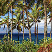 Tropical Paradise Maui Poster