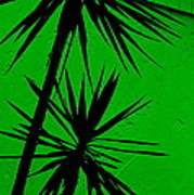 Tropical Splash Poster