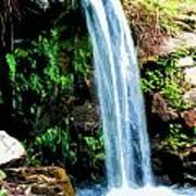 Tropical Waterfall And Pond Poster