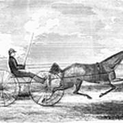 Trotting Horse, 1853 Poster