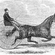 Trotting Horse, 1861 Poster
