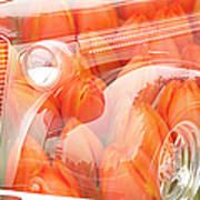 Tulip Car Abstract Poster
