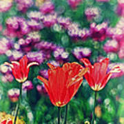 Tulips On Beautiful Bokeh Poster
