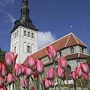 Tulips Outside Niguliste Church Poster
