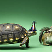 Turtle And Chipmunk Wearing Party Hats Poster