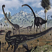 Two Allosaurus Predators Plan Poster