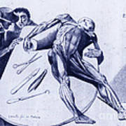 Two Gentlemen Contemplating A Cadaver Poster