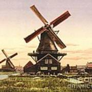 Two Holland Windmills Poster