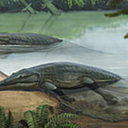 Two Prehistoric Platyoposaurus Poster
