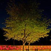 Under The Tree Poster by Christine Stonebridge