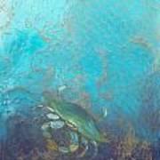 Underwater Blue Crab Poster