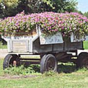 Unique Flower Pot Poster