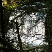 Upper Butte Creek Falls Through The Trees Poster