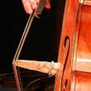 Upright Bass 1 Poster