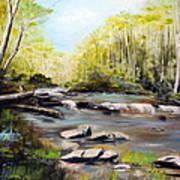 Upstate South Carolina Trout Stream Poster