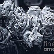 Vase Of Flowers 2 Poster by Madeline Ellis